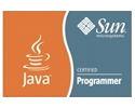 Sun - Java Cetified Programmer